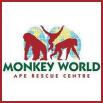 Monkey World, Dorset