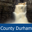 Days Out in County Durham