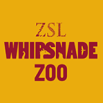 ZSL Whipsnade Zoo,­ Dunstable
