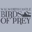 Walworth Castle Birds of Prey, Walworth