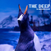 The Deep, Hull, East Yorkshire