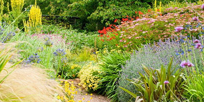 Barnsdale Gardens, Oakham