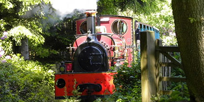 Hollycombe Working Steam Museum, Liphook