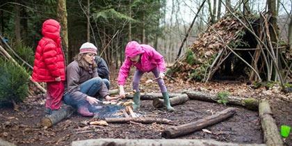 Wilderness Wood, Heathfield
