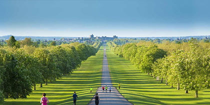 Windsor Great Park, Windsor