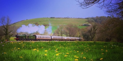 South Devon Railway, Buckfastleigh