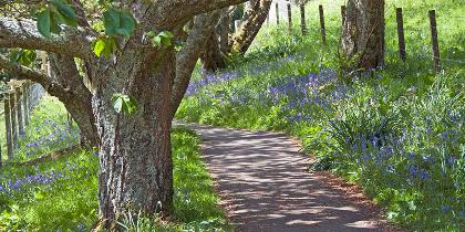 Arduaine Garden, Argyll