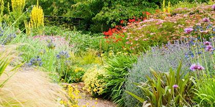 Barnsdale Gardens Oakham