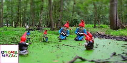Gnome-Magic-Colchester