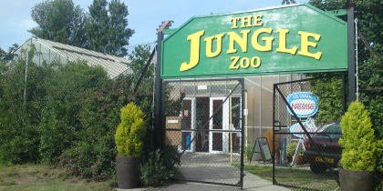 The Jungle Zoo Cleethorpes