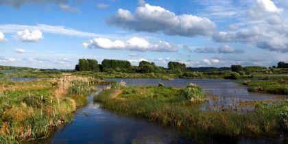 Rutland Water Nature Reserve, Oakham