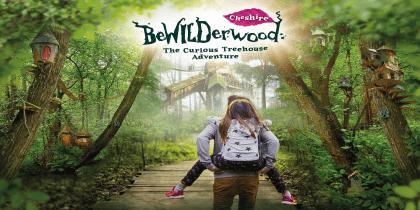 Bewildered Cheshire Banner Logo